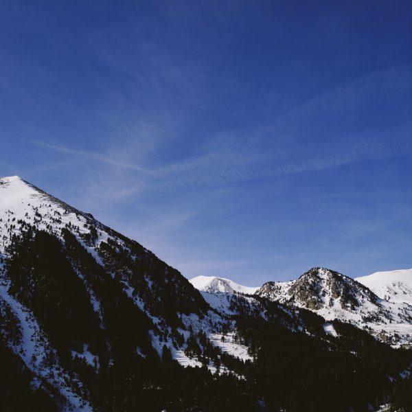 Colònies a la neu